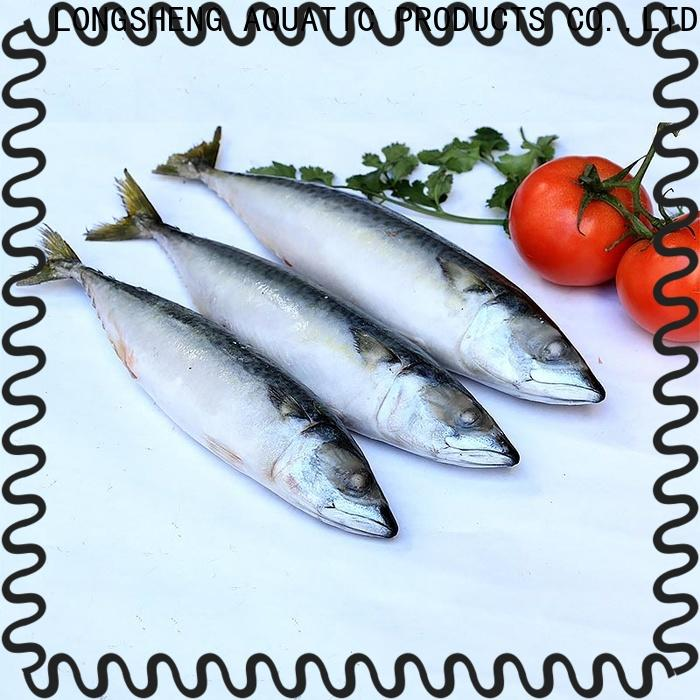 professional frozen chub mackerel hgt for business for market