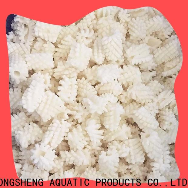LongSheng bulk purchase frozen whole uncleaned squid for sale company for hotel