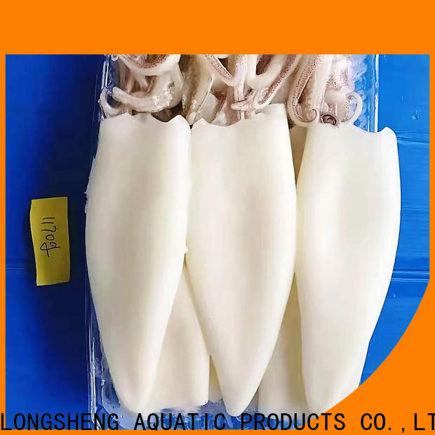 Latest frozen squid loligo suppliers tt Suppliers for cafeteria