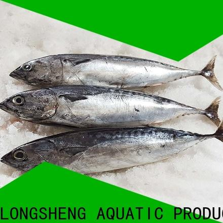 LongSheng bonito frozen bonito for sale for business for seafood shop