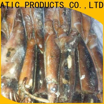 LongSheng chinese frozen illex squid for sale for cafeteria