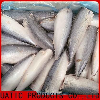 bulk purchase frozen mackerel prices frozen manufacturers for market