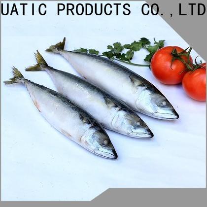 Top mackerel hgt whole for restaurant
