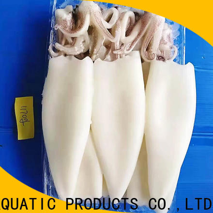LongSheng chinese squid for sale factory for cafe