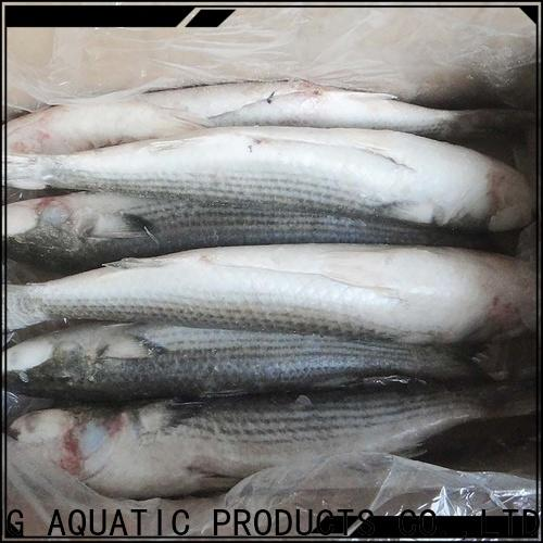LongSheng reliable frozen mullet fish Supply for hotel