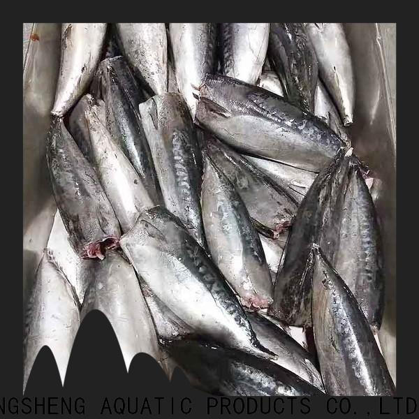bulk buy frozen bonito fish prices hgt for seafood shop