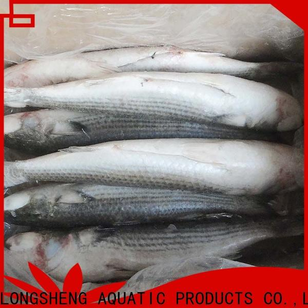 LongSheng bulk buy frozen grey mullet fish Suppliers for hotel