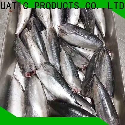 LongSheng wholesale frozen bonito fish for sale factory for supermarket