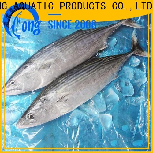 LongSheng bulk purchase frozen fish producers Supply for party