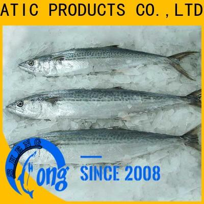 Wholesale frozen spanish mackerel for sale mackerel for market