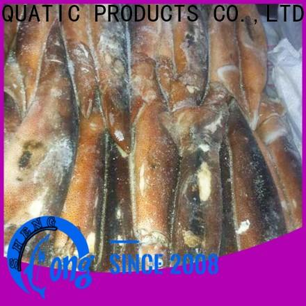healthy frozen squid sale tt for business for restaurant
