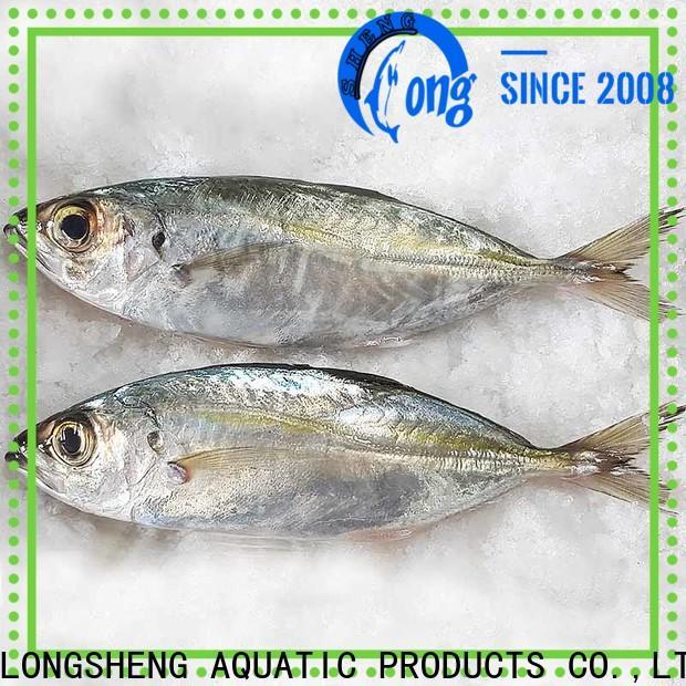 wholesale Frozen Horse mackerel whole round horse company for hotel