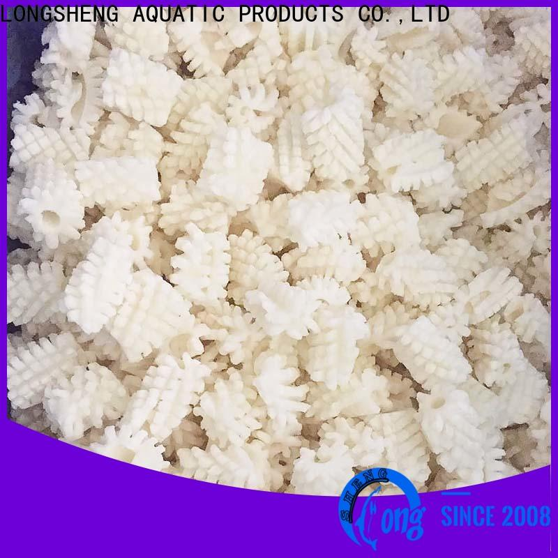 LongSheng round squid frozen for business for cafe