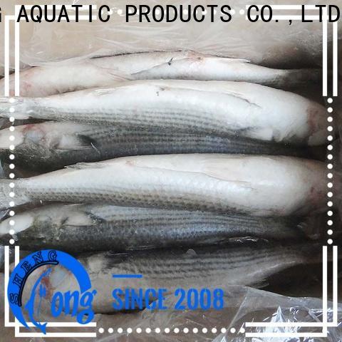 LongSheng Wholesale frozen fish manufacturers factory for supermarket
