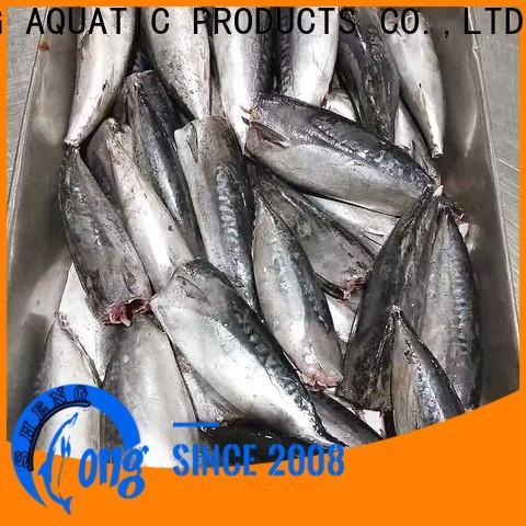 Top frozen bonito hgt bonito factory for market