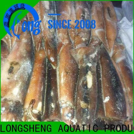 LongSheng tt frozen whole squid for business for cafe