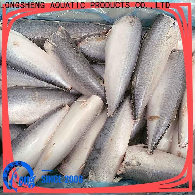 Top frozen mackerel fish hgt for restaurant