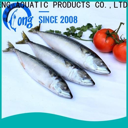 new landing mackerel frozen for business