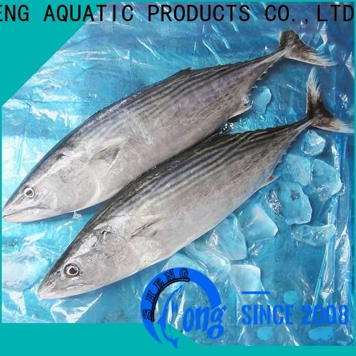 LongSheng Wholesale frozen bonito tuna Supply for dinner