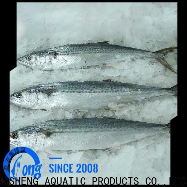 LongSheng sale frozen spanish mackerel manufacturers for supermarket