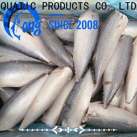 frozen mackerel flaps mackerel Suppliers for hotel