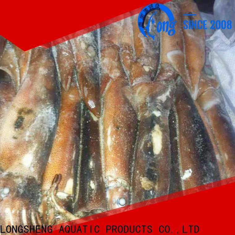 LongSheng bulk purchase frozen squid whole factory for restaurant