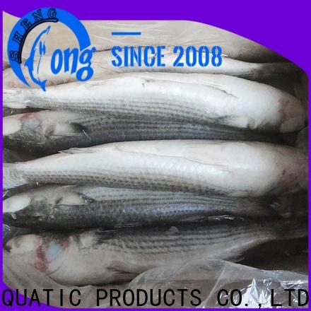 LongSheng fillet frozen fish wholesale for business for restaurant