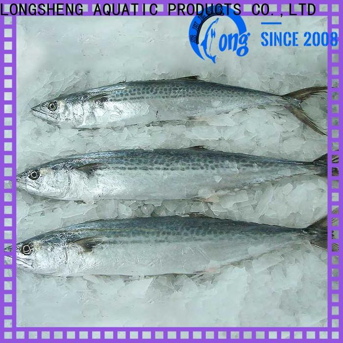 bulk buy frozen spanish mackerel fish mackerel for supermarket