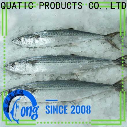 LongSheng Latest spanish mackerel fish price company for supermarket