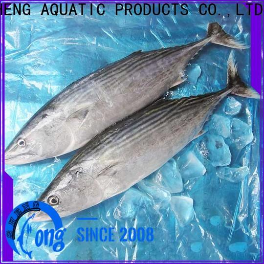 LongSheng frozen bonito tuna surpplier for business for family