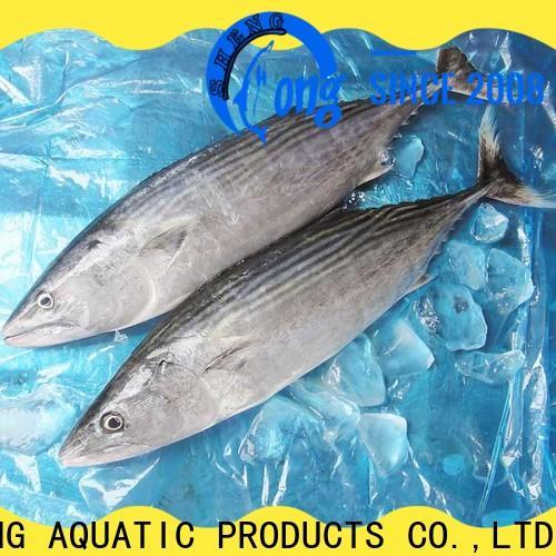 LongSheng tuna frozen bonito tuna sale Supply for party